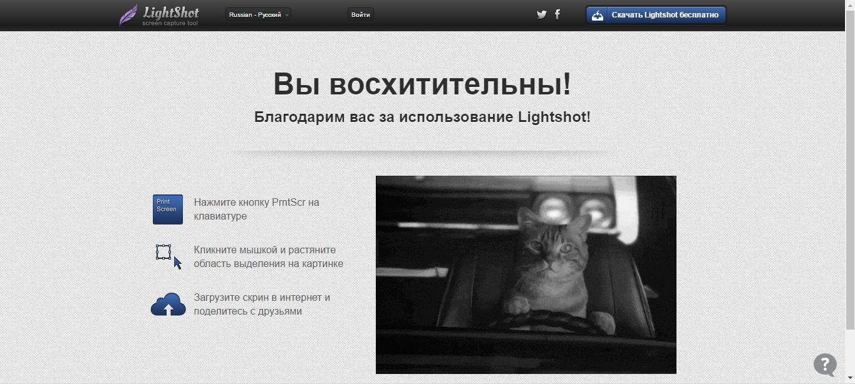 lightshot-programma-dlya-skrinshotov